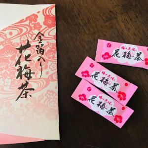 梅の花咲く立春!!開運に導く風水カレンダー&身体に沁み入る梅花茶