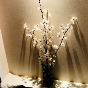 玄関ニッチで愛でる桜からの?!2019年5月からの新元号 令和のR時代へ