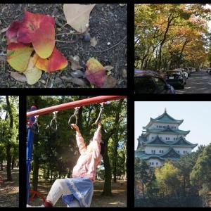 名城公園色づき始め