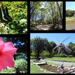 名城公園の夏