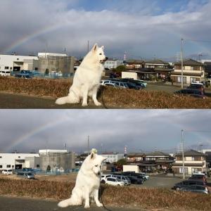 虹が出たから