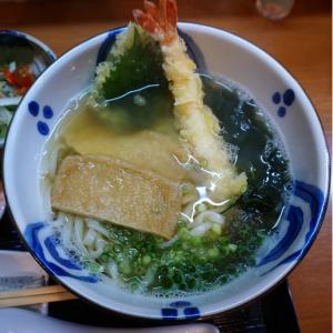『和麺・桜』上品な平打ち麺のうどんに舌鼓!