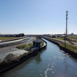 見沼代用水と武蔵水路を同時に楽しめる