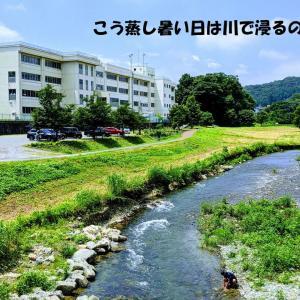 埼玉県ときがわ町でグルメ&川遊び&トレッキングを楽しんで