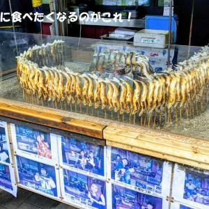 秋の味覚を求めて茨城県常陸の国へ