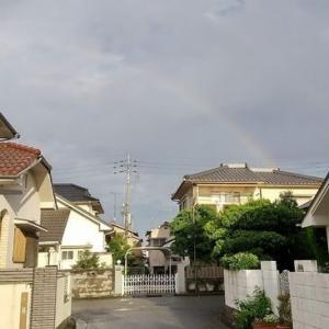 雨と朝もやと虹