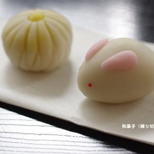 和菓子(練り切り)講座ワークショップ
