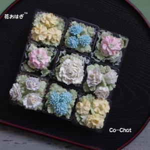 手土産に ALA和花シリーズ「花おはぎ」