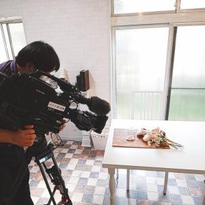 NHKテレビ「ひるまえほっと」に出演いたしました