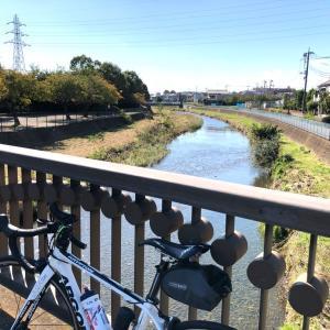 3連休は3日とも自転車乗れた。お天気バンザイ。