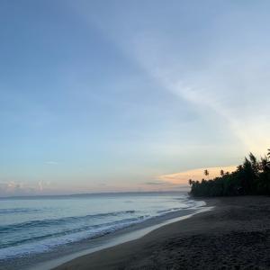 世界中からサーファーが訪れる静かなビーチタウン