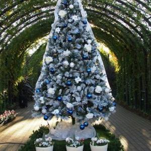 横浜イングリッシュガーデンのクリスマス2019