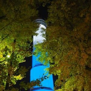 山下公園前のイチョウ並木(日没後)