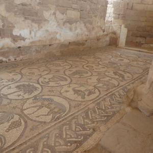 ヨルダン旅行 その13 美しいモザイクの残るペトラ教会。