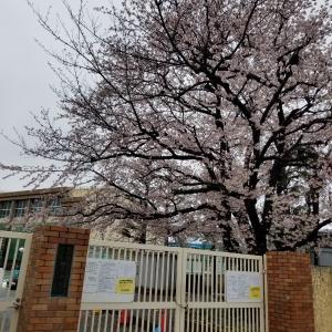 2020 桜メモ その3