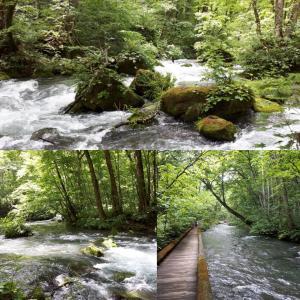 新緑の奥入瀬渓流の絶景と十和田湖
