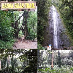 ハワイ観光・マノアの滝、カメハメハ大王像、カラカウア通り、ハワイ陸軍博物館