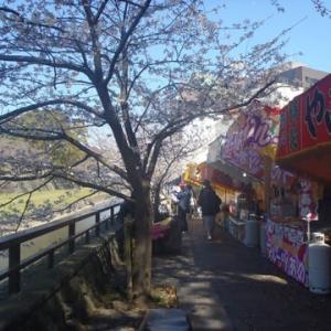 春の熊本城へちょっと散歩に
