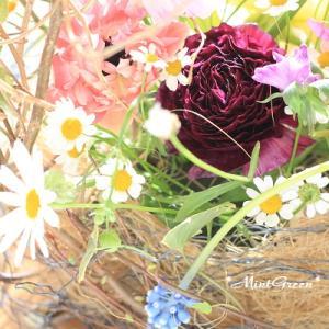 春の花のイメージは黄色だけど(花 96/10)