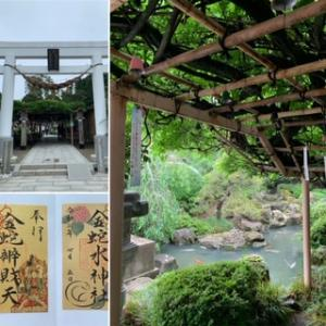 一年に一度の御開帳にお詣りした神社