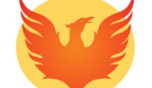 鳳雛よ未来に羽ばたけ/Young Phoenixes, Soar Into the Future! 〔#302〕