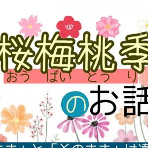 "【YouTube】桜梅桃李の話/The principle of ""cherry, plum, peach and damson"" 〔#333〕"