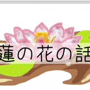 【youtube】蓮の花の話 〔#340〕