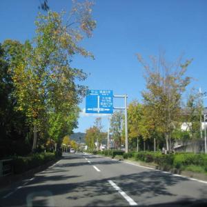 前編・・・紅葉の京都・「嵐山-高雄パークウェイ」をドライブ