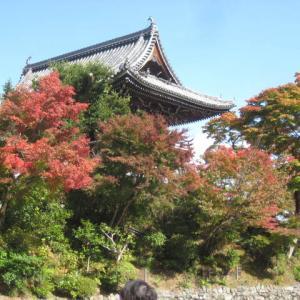 京都・西山三寺の一つの「吉峯寺」に初めて、お参りしましたが・・・