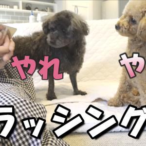 今夜20:30公開^^★☆彡
