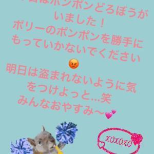 6月1日(土)京セラ:西川遥輝、うっかりチアダンスを披露してしまうww