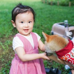 娘、初めて犬に触る