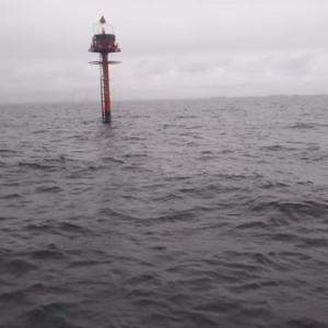 釣り記事3連発 ③ 江戸前キスとアナゴ釣り