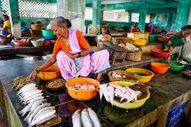 インド放浪 本能の空腹 24 『不良インド人 バップー』