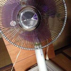 【夏仕舞い】扇風機をしまいました(ようやく)