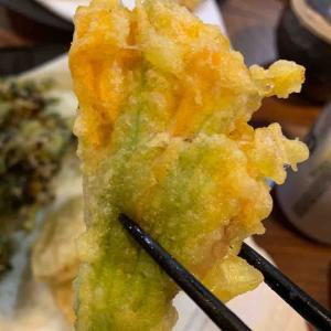 今年もまたズッキーニフラワーの天ぷらを食す