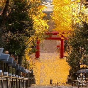今年のお礼参り 愛宕神社