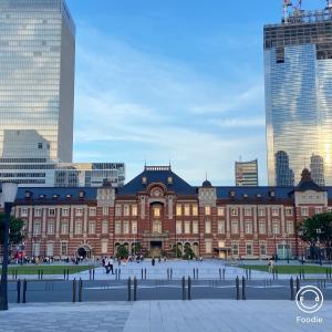 駅弁で家ご飯 美しすぎる東京駅 『竜とそばかすの姫』