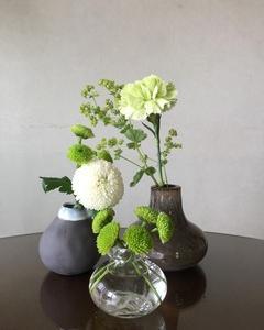 涼しげに緑と白の花を