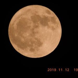 ピカピカの満月が空高くで輝いています