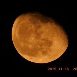 月が今日も昇ってきました