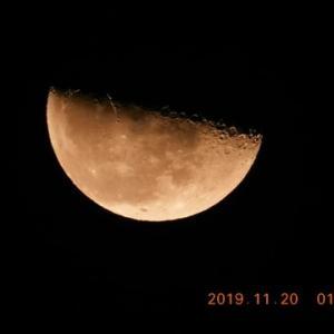 夜も朝も楽しむお月見ぃ~!