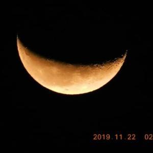 夜中、静かに向き合った月