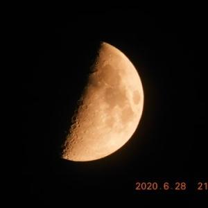 上弦の月がスッキリ見えて来ました!