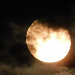 月よどうぞ見守って(気候変動した日本)