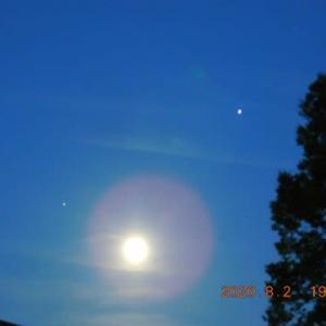 東空に今、惑星に挟まれてうれしそうな月がっ!