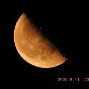 日付が変わる直前にみつけた半月です!