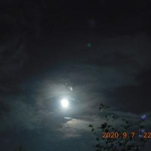 月は火星からだいぶ離れていました