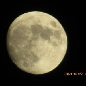 暑い夜にすっきり顔の月(コロナの検査数の統計も検証)