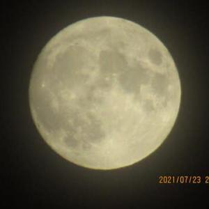 連日のお月見です。明日が満月